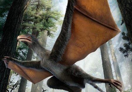 Dinobat: el dinosaurio con alas de murciélago