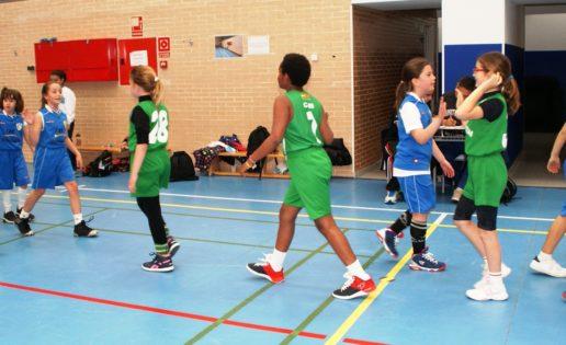 Baloncesto mixto: Miramadrid «B» y BVM Irlandesas «C»