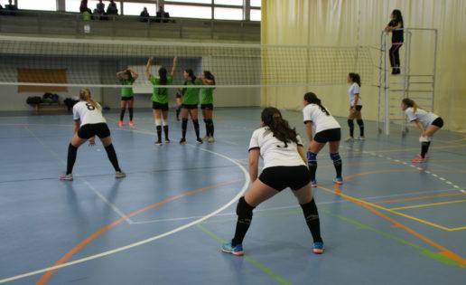 """Nieves """"A"""", SLF """"A"""", Rafaela Ybarra y Montpellier caminan hacia el título"""