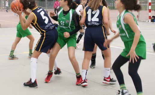 Las mejores imágenes del partido de baloncesto infantil femenino entre San Juan Evangelista y BVM Irlandesas