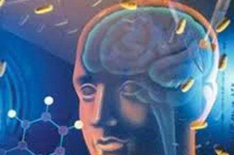 El cerebro produce su propio tranquilizante