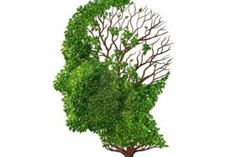 Desvelan una ruta clave en el desarrollo de la enfermedad de Alzheimer