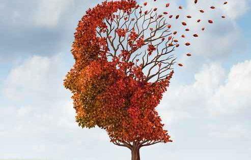 La predisposición genética al alzhéimer tiene una base inmune