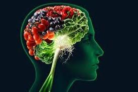 Diez nutrientes esenciales para el cerebro