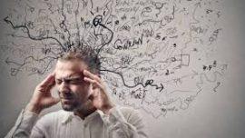 El estrés encoge el cerebro
