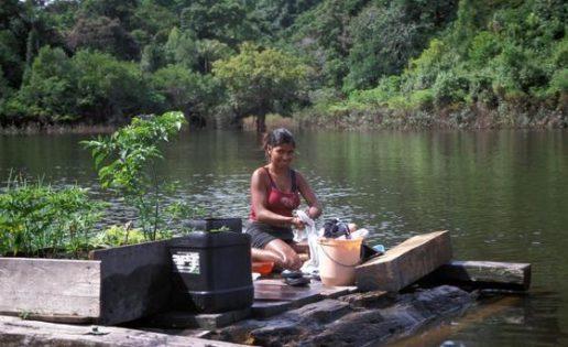 Hijos del Amazonas