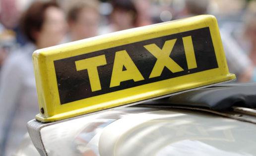 Un taxista que alimenta a perros callejeros conmueve a las redes sociales