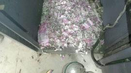 Unas ratas se meten en un cajero y se comen 15.000 euros