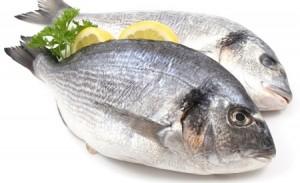 pescadoblanco