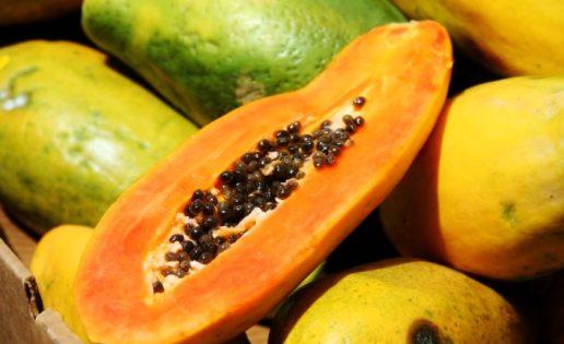 Receta FIT: Fideos de verduras con salsa de papaya y cilantro