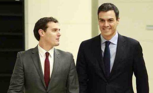 C's quiere limpiar el PP pero no el PSOE