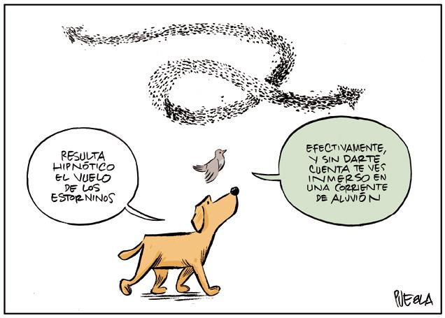 Cacho y Gorriona. Hipnosis.