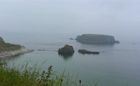 Sheep Island from Carrick-a-rede.