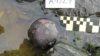 Nuevos hallazgos del Purísima Concepción, un naufragio español en el fin del mundo