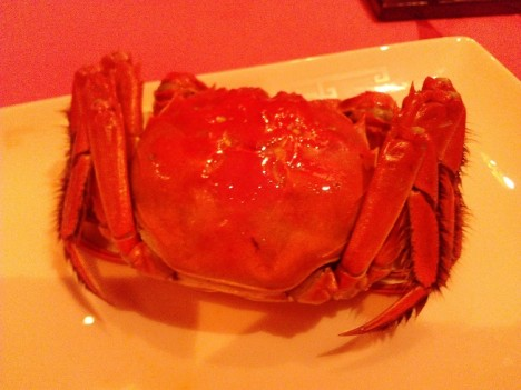 Hairy crab, cangrejo peludo