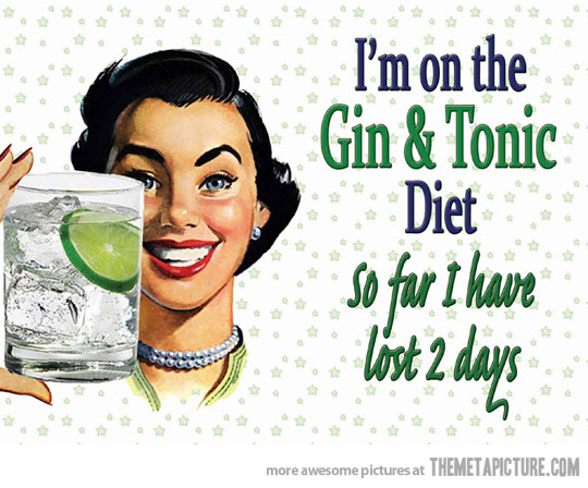 funny-girl-drink-gin-tonic-diet