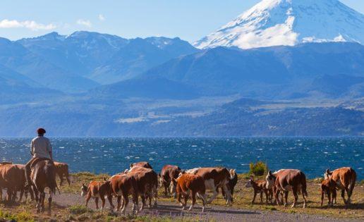 La Argentina que ambiciona la normalidad