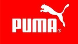Puma contra Gucci