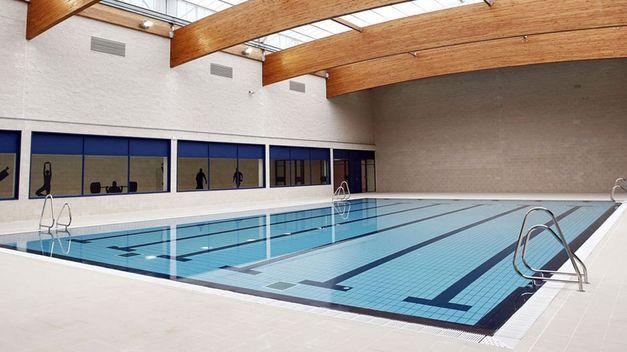 Presos con langostinos laboratorio de estilo for Hablemos de piscinas