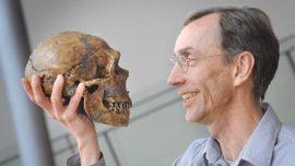 Los humanos modernos tuvieron sexo con los neandertales
