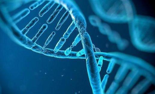 ¿Y si nuestro genoma no fuera del todo humano?