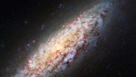 El enigma de la galaxia solitaria