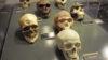 ¿Podría existir una población de denisovanos oculta en una remota isla del Pacífico?