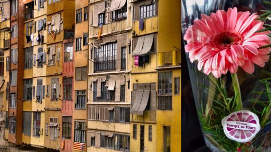 Gerona se viste de flores