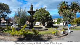 """El Quito más """"pelucón"""""""