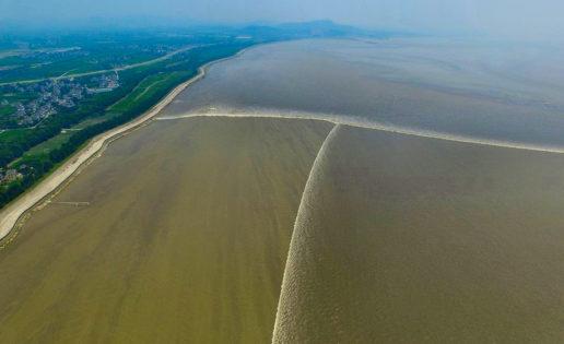 La marea más gigantesca tiene forma de T