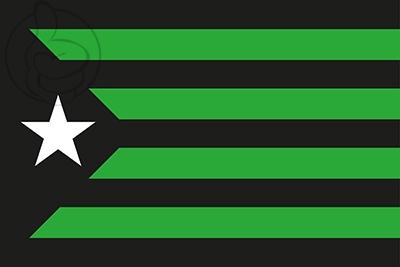 5358-estelada-negra-y-verde_400px