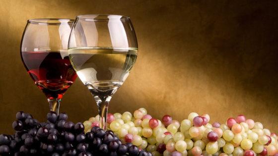 Cinco términos básicos en el mundo del vino