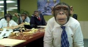 Si pagas cacahuetes, tendrás monos