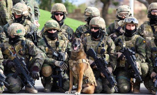 Túnez, la misión más sigilosa del Ejército español