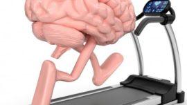 El ejercicio rejuvenece el cerebro