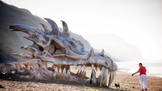 Encuentran un dragón en la playa de Dorset