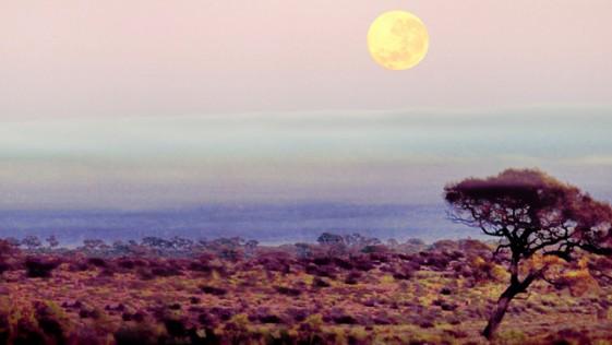 La súper Luna, la tormenta y la marea reina