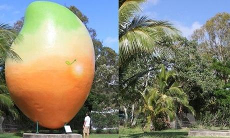 Big mango o el misterio de la fruta huidiza