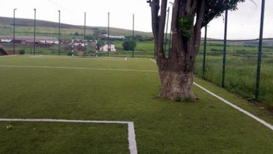 Construyen un campo de fútbol nuevo… ¡y dejan un árbol en medio!