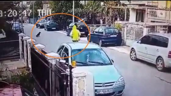 Un perro salva a una mujer de sufrir un atraco
