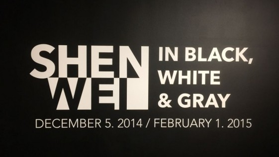 Shen Wei. In Black, White & Gray. Miami