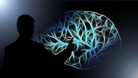 Cosas que le pasan a tu cerebro cuando no duermes bien