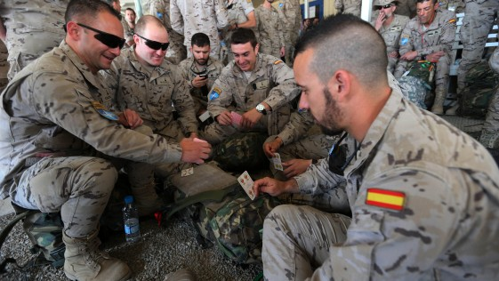 De vuelta a España (I): CATO, mus, banderas y canciones