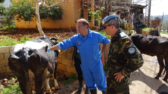 Veterinarios de la «Complu», codo con codo con los militares en Líbano