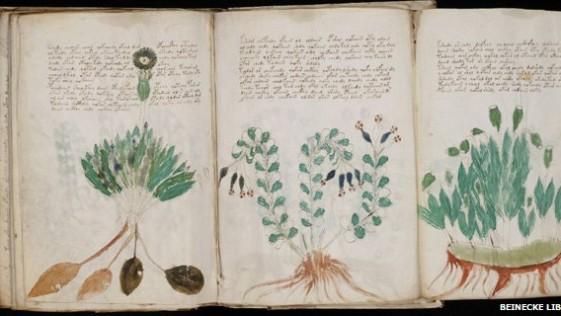 Nuevos indicios de la existencia de un idioma desconocido en el misterioso texto de Voynich