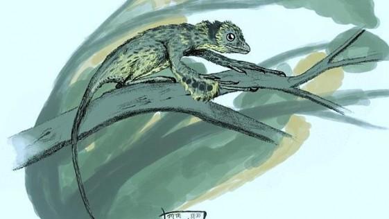 ¿Y si después de todo las aves no descienden de los dinosaurios?