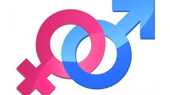 Por qué las hembras viven más que los machos