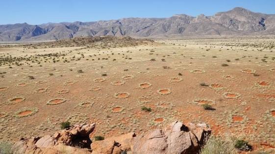 Resuelto el misterio de los «círculos» de Namibia