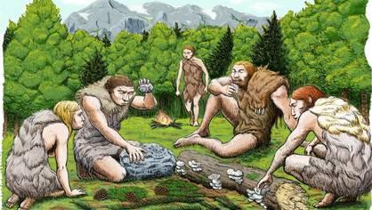 Los neandertales usaban «aspirinas»