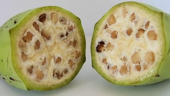 ¿Se comería usted esta fruta «natural»?
